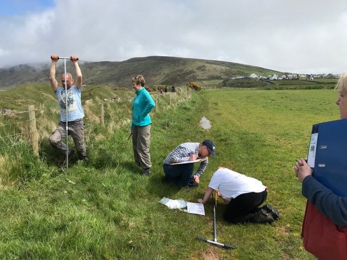 Volunteers hand auguring one of the Vile's field boundaries